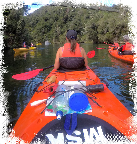 Marahau Sea Kayaks - A great Abel Tasman Kayak experience