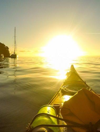 Marahau Sea Kayaks - MSK- Abel Tasman guided kayak trip & walk